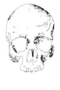 new-skull-alpha-t-shirt-3-1